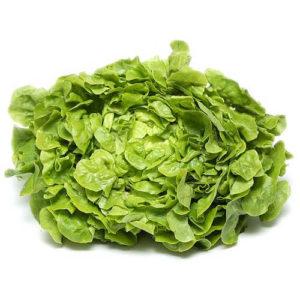 salade-feuille-de-chene-blonde